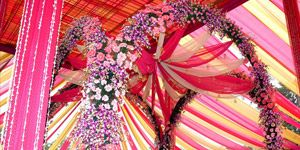 Wedding Company India